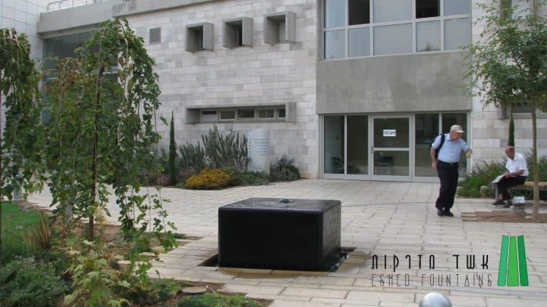 גן-הנצעה-לפרופ-רסקין185