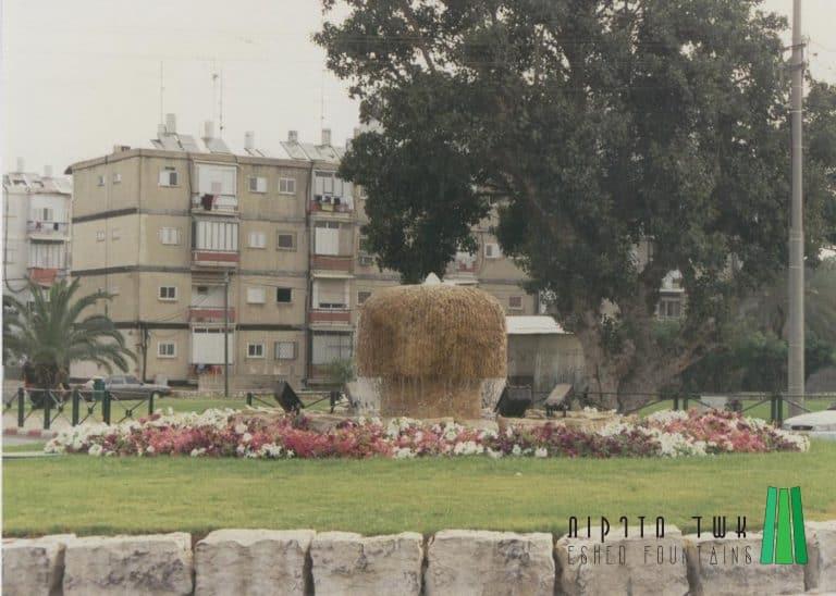 כיכר-אלי-כהן56